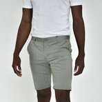 Tech Fabric Shorts // Sage (40)