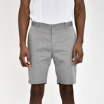 Tech Fabric Shorts // Gray (40)