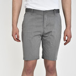 Tech Fabric Shorts // Gray (36)
