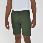 Tech Fabric Shorts // Emerald Green (38)