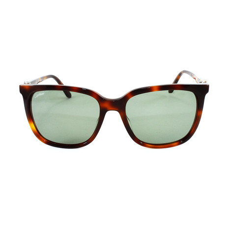 Unisex CT0004S Sunglasses // Green Gradient