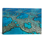 """Coral Formations On Hardy Reef, Great Barrier Reef, Queensland, Australia // Ingo Arndt (40""""W x 26""""H x 1.5""""D)"""
