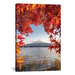 "Autumn In Japan II // Daisuke Uematsu (12""W x 18""H x 0.75""D)"