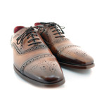 Marylebone Brogue // Tan + Brown Toe (US: 10.5)