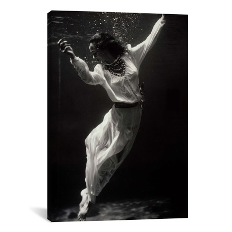 """Fashion Model Underwater in Dolphin Tank // Print Collection (12""""W x 18""""H x 0.75""""D)"""