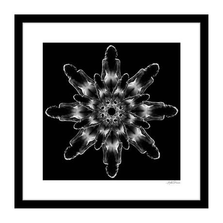 """Barre Human Kaleidoscope Framed Wall Art (16""""W x 16""""H x 1""""D)"""