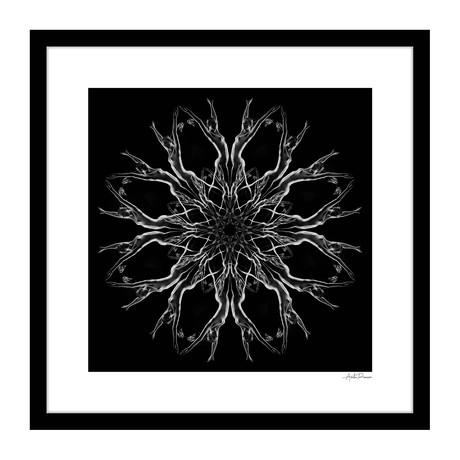 """Tendu Human Kaleidoscope Framed Wall Art (16""""W x 16""""H x 1""""D)"""
