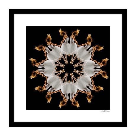 "Adagio Human Kaleidoscope Framed Wall Art (16""W x 16""H x 1""D)"