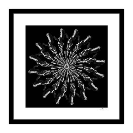 """The Bow Human Kaleidoscope Framed Wall Art (16""""W x 16""""H x 1""""D)"""
