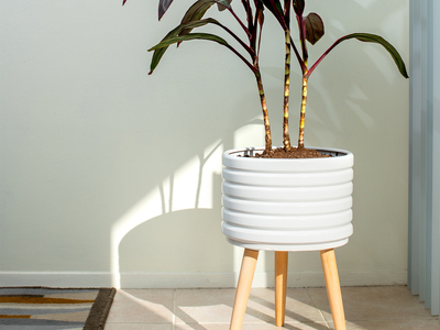 photo of Groove Ceramic Planter by Touch Of Modern