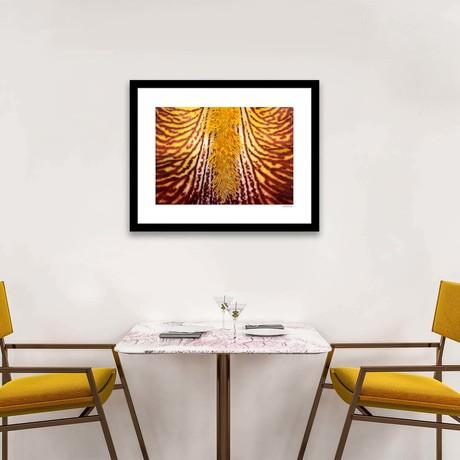 """Yello Filament Framed Wall Art (12""""W x 16""""H x 1""""D)"""