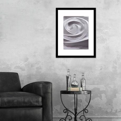 """Nature's Spiral Framed Wall Art (12""""W x 16""""H x 1""""D)"""