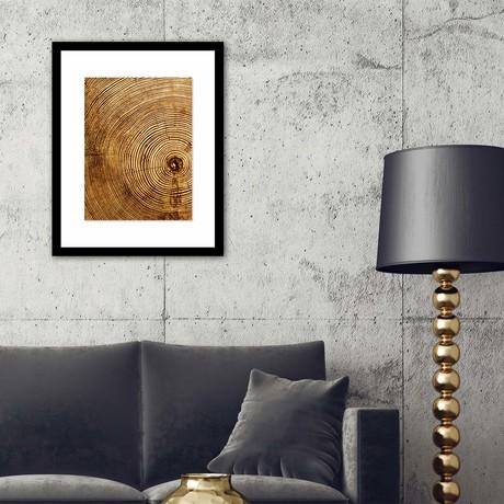 "Lifespan of a Tree Framed Wall Art (12""W x 16""H x 1""D)"