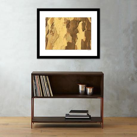"Rock Wall Framed Wall Art // II (12""W x 16""H x 1""D)"