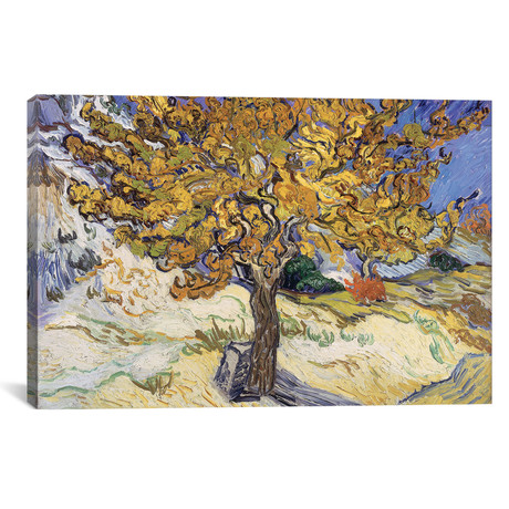 "Mulberry Tree // Vincent van Gogh // 1889 (26""W x 18""H x 0.75""D)"