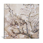 "Almond Branches In Bloom San Remy // Vincent van Gogh // 1890 (18""W x 18""H x 0.75""D)"