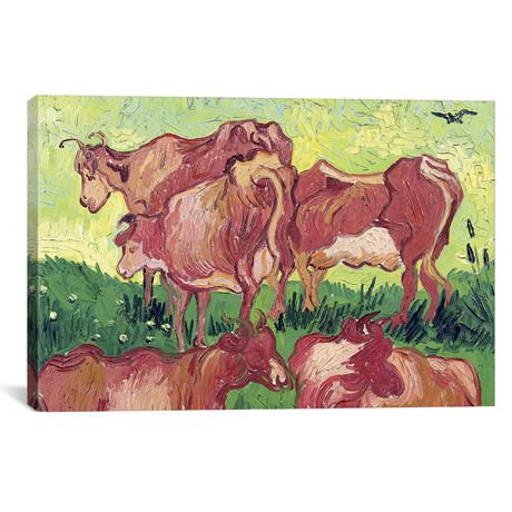 Cows // Vincent van Gogh // 1890