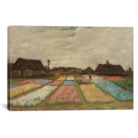 """Tulpenfelder (Tulip Fields) (18""""W x 26""""H x 0.75""""D)"""