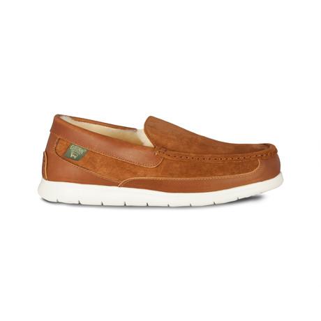 Shipley Shoe // Chestnut (US: 7)