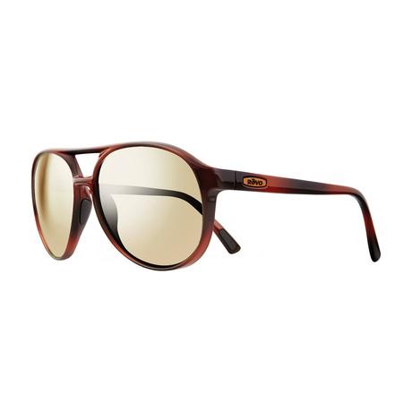 Marx Polarized Sunglasses // Honey Tortoise Frame // Champagne Lens