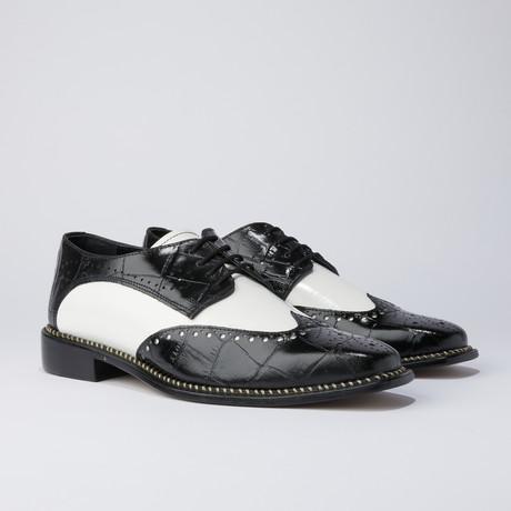 Boyka Dress Shoes // Black + White (US: 7)
