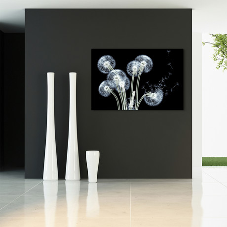 Dancing Dandelions // Reverse Printed Tempered Art Glass