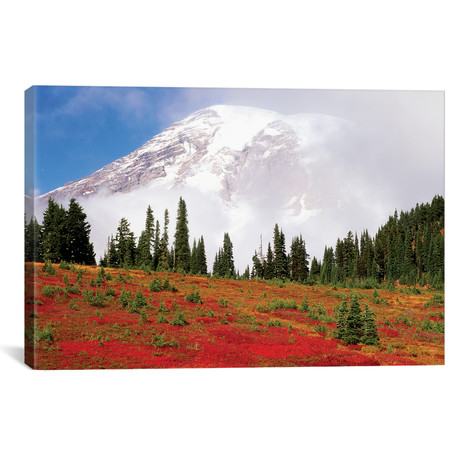 "Fog-Covered Mount Rainier With An Autumn Landscape In The Foreground // Stuart Westmorland (26""W x 18""H x 0.75""D)"