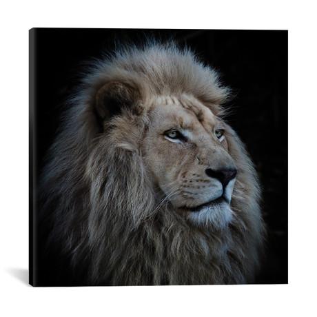 "Proud Lion // Louise Wolbers (18""W x 18""H x 0.75""D)"