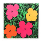 Andy Warhol // Flowers II.6 // 1964