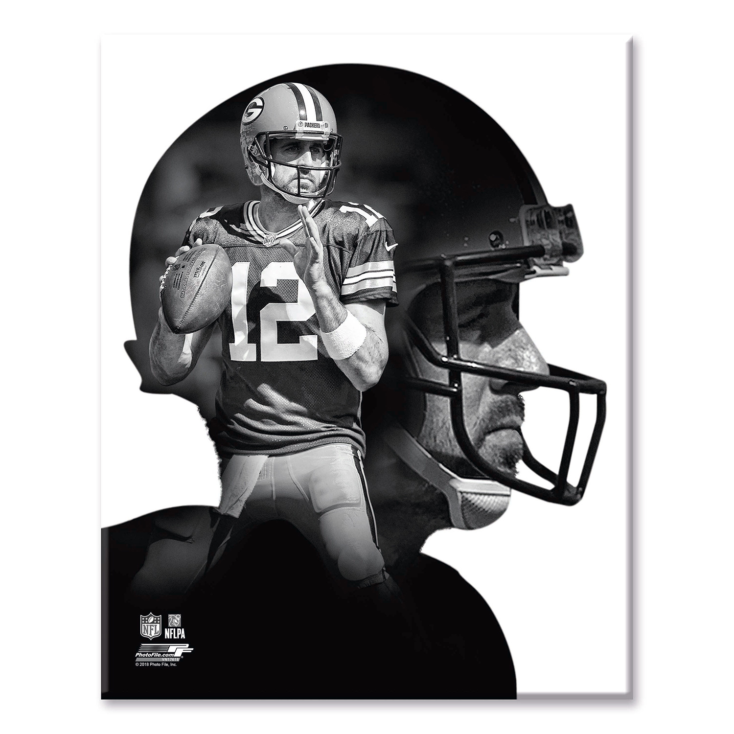 Aaron Rodgers Profile Green Bay Packers 11 W X 14 H X 2 D Sports Profiles Touch Of Modern