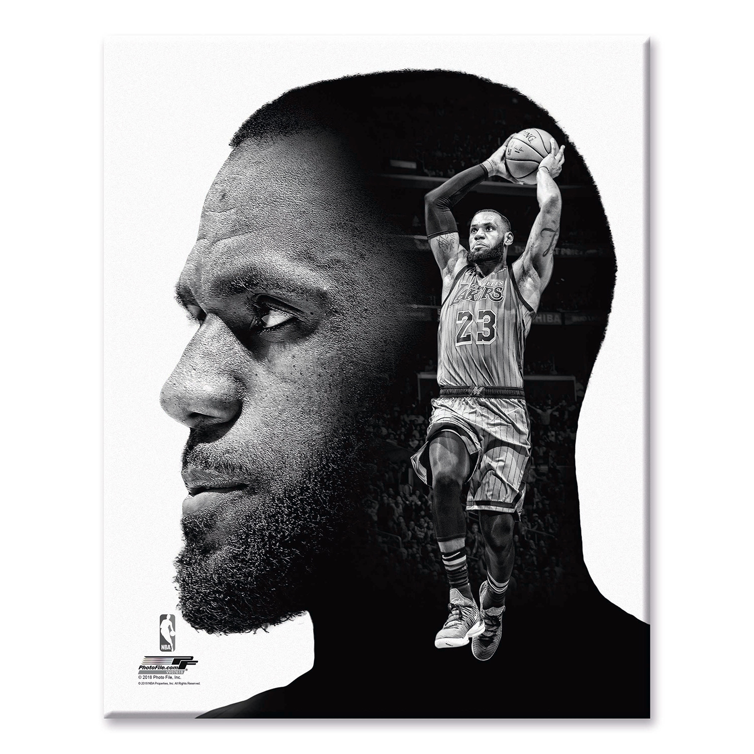Lebron James Profile Los Angeles Lakers 11 W X 14 H X 2 D Globe Photos Permanent Store Touch Of Modern