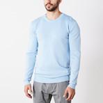 Slim Crew Neck Sweater // Powder Blue (S)