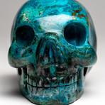 Genuine Polished Chrysocolla Skull // II