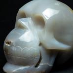 Genuine Polished Agate Skull
