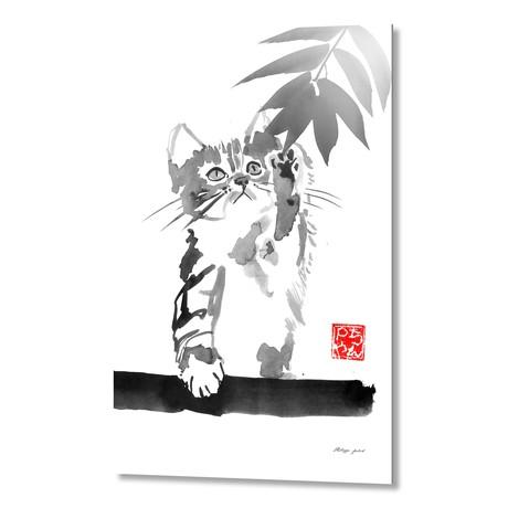 Catching Cat 02 // Aluminum Print