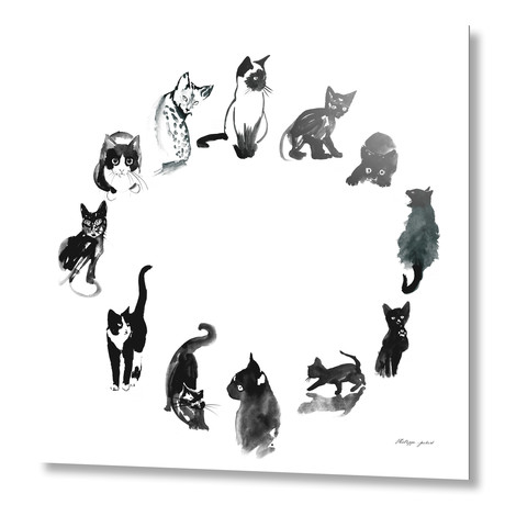 """Cat Round // Aluminum Print (16""""W x 20""""H x 1.5""""D)"""