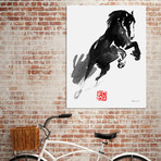 "Jumping Horse // Canvas (16""W x 24""H x 1.5""D)"