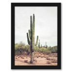 Contemporary Southwest Photography Framed Gallery Wall Set
