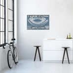 "New York Yankees Stadium Blue // Cutler West (26""W x 18""H x 0.75""D)"
