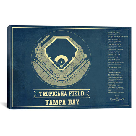 "Tampa Bay Tropicana Field // Cutler West (26""W x 18""H x 0.75""D)"
