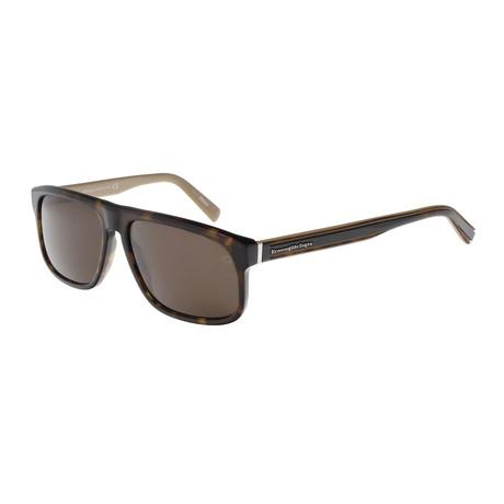Men's EZ0003 Sunglasses // Dark Havana + Green
