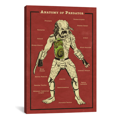 "Predator Anatomy Diagram // 5by5collective (18""W x 26""H x 0.75""D)"