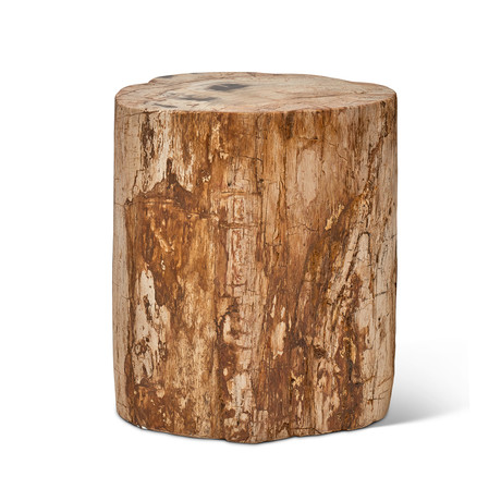 Stump // Fully Polished (Natural Dark + Antique Brass)