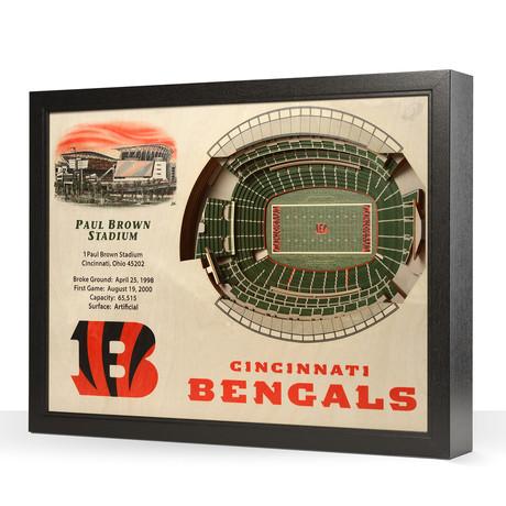 Cincinnati Bengals // Paul Brown Stadium (5 Layers)