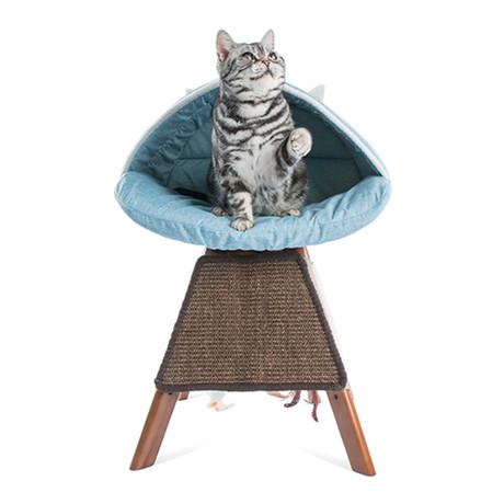 Cat Bed // C.C. // Blue