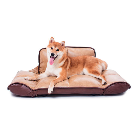 Crossover Dog Sofa + Folding Arms and Back