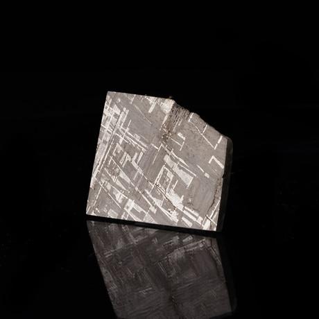 Muonionalusta Meteorite Slice // Ver. I
