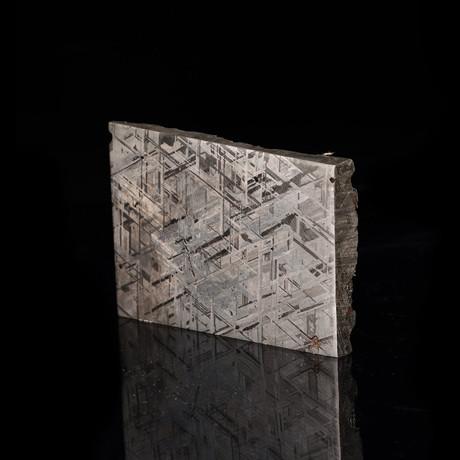 Muonionalusta Meteorite End Cut // Ver. II