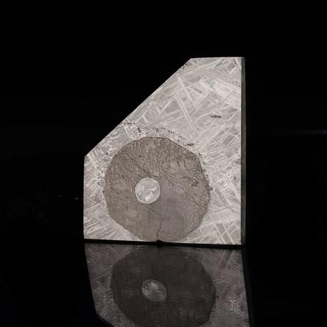 Muonionalusta Meteorite // Slice + Triolite