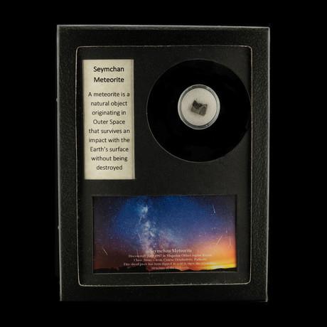 Seymchan Meteorite in Collectors Box